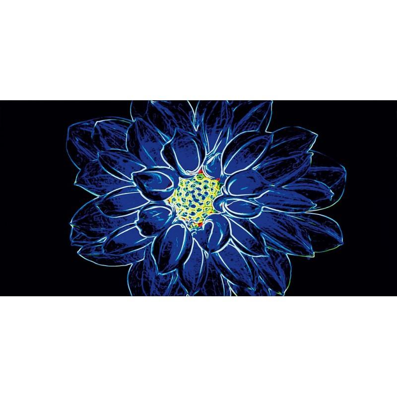 OPOCZNO FLUORESCENT FLOWER BLUE INSERTO 29,7x60 GAT.1