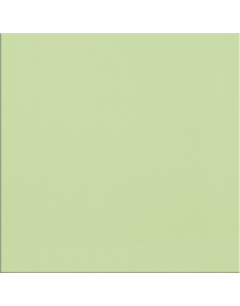 OPOCZNO MONOBLOCK LIGHT GREEN MATT 20X20 GAT.1
